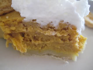 Pumpkin pie]